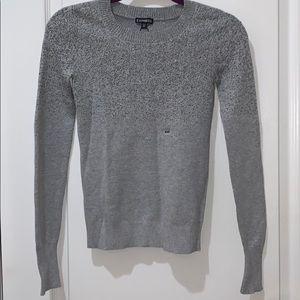 Express silver glitter gray sweater